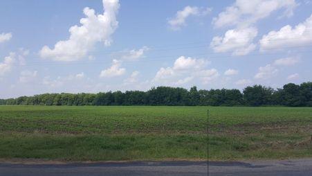 Perry County Farmland