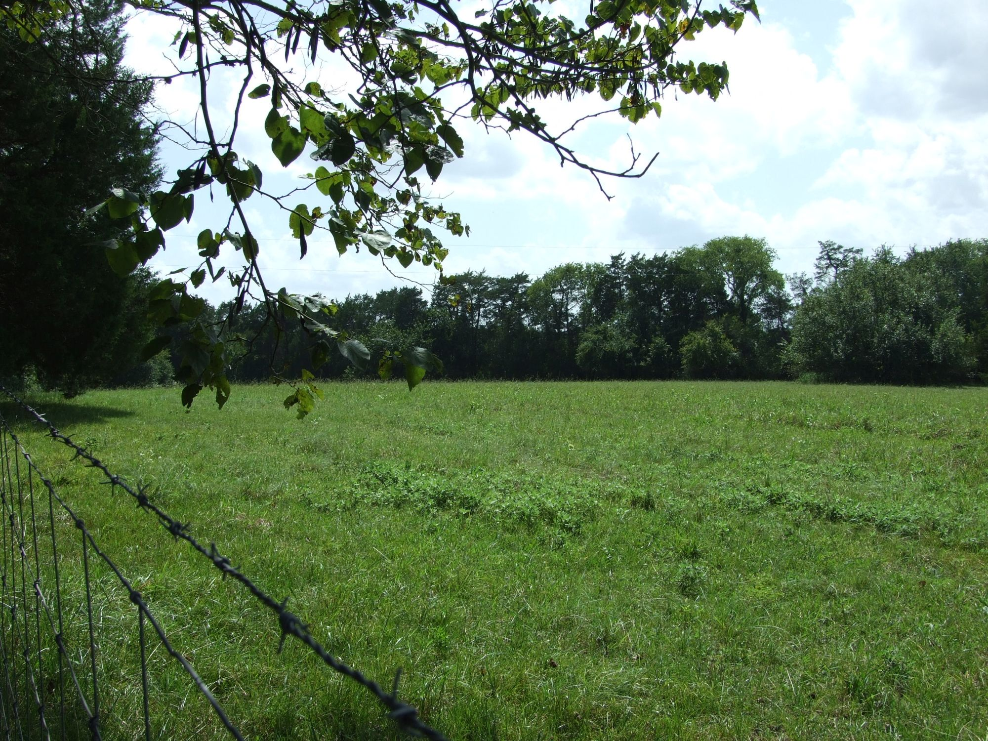 Ranch – 100+\- acres and house